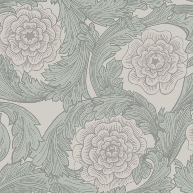 Rosa / 51008 / Blomstermala / midbec