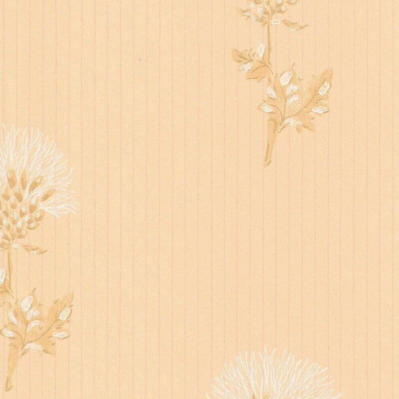 Ohdake / 69704 / Classic / Pihlgren & Ritola