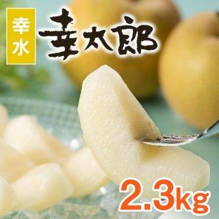 【幸水】幸太郎2.3kg【7/26頃〜発送】