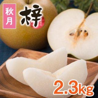 【秋月】梓2.3kg【9/10頃〜発送】