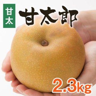 【甘太】甘太郎2.3kg【9/20頃〜発送】