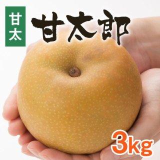 【甘太】甘太郎3kg【9/20頃〜発送】