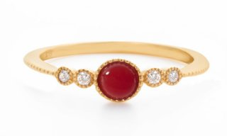 Red Coral 01
