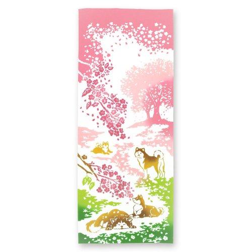桜の丘でひと休み