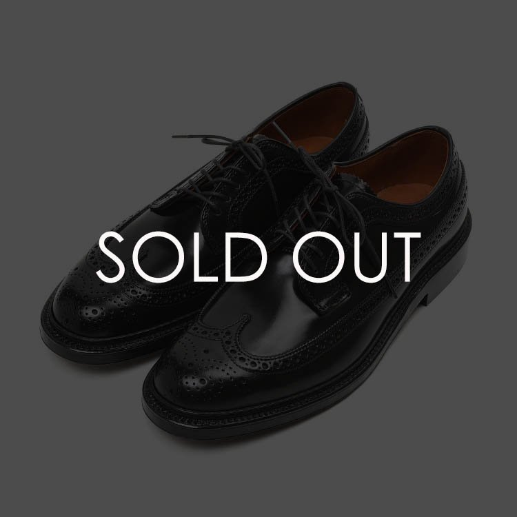 ALDEN (オールデン) 9751 LONG WING バリー コードバン 【ブラック】