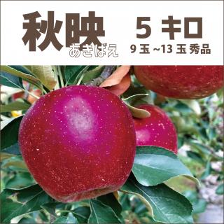 【産地直送りんご】 秋映 あきばえ 5キロ(1段箱)9玉〜13玉(大玉)