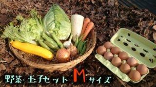 [送料込み]野菜・玉子セット Mサイズ
