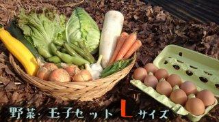[送料込み]野菜・玉子セット Lサイズ