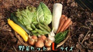 [送料込み]野菜セット Lサイズ