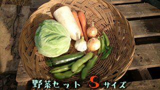 [送料込み]野菜セット Sサイズ