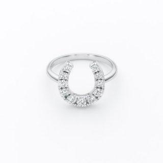 H029 ラボグロウンダイヤモンドリング / プラチナ / 0.50カラット