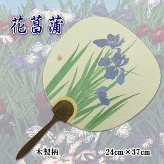 大特価 京うちわ 花菖蒲 木製柄 アウトレット