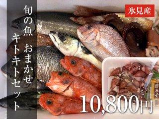 旬の魚 おまかせセット 15,000円