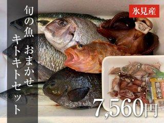 旬の魚 おまかせセット 10,000円