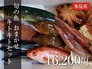 旬の魚 おまかせ キトキトセット 16,200円