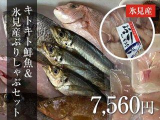 キトキト鮮魚&氷見産ぶりしゃぶセット 7,560円