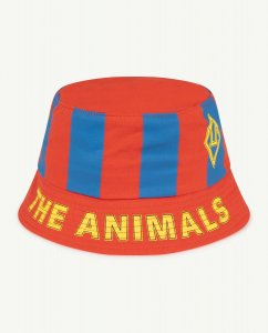 The Animals Observatory STARFISH  KIDS HAT RED/BLUE