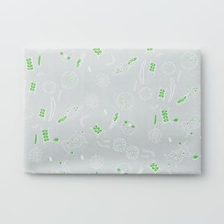 デザイン封筒【小さな世界】/3枚セット