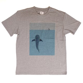 Whale Shark SS Tee_H.Gray