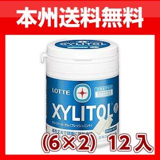 (本州一部送料無料)ロッテ キシリトールガム フレッシュミントボトル(6×2)12入。