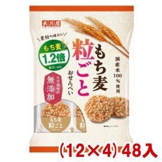 (本州一部送料無料) 天乃屋 もち麦粒ごとおせんべい (12×4)48入 (Y16)。