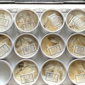 透石膏/アルミ缶入