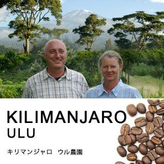 キリマンジャロ ウル農園 (100g)