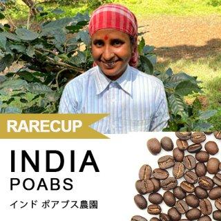【レアカップ】インド ポアブス農園 160g(WEB限定)クリアストッカー入り