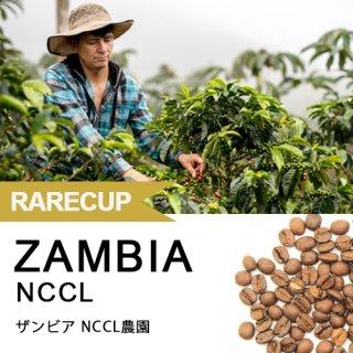 【レアカップ】ザンビア NCCL農園 160g(オンライン限定)