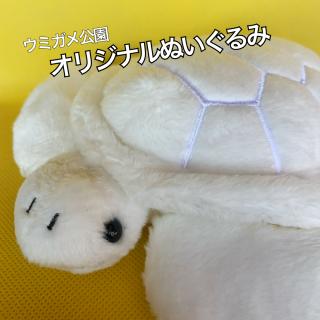 《幸運舞い込め!!!》白いカメ