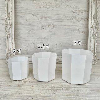 植え替えに!八角鉢[白]2寸〜3寸