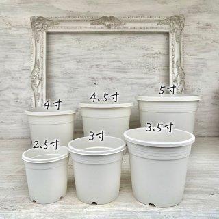 植え替えに!丸鉢[白]2.5寸〜5寸