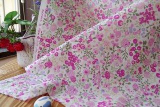 イチゴ&木の実の頬擦りローン・オフ白×ピンク