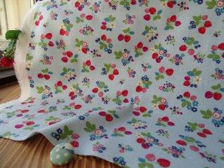 イチゴ&小花の柔らかビエラ・サックス