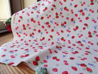 イチゴ&さくらんぼの柔らかブロード・オフ白