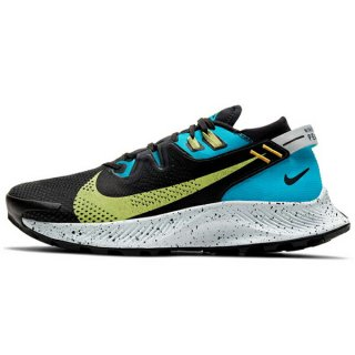<img class='new_mark_img1' src='https://img.shop-pro.jp/img/new/icons24.gif' style='border:none;display:inline;margin:0px;padding:0px;width:auto;' />NIKE ナイキ WS Pegasus Trail(ペガサストレイル) 2 CK4309003 レディース トレイルランニング シューズ