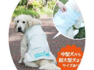 保冷剤が入るポケット付き!盲導犬クールTシャツ♪