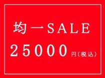 25,000円(税込)均一