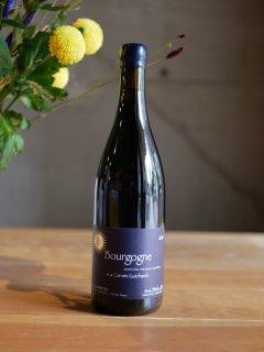 ドメーヌ ブリス マルタン 18'ブルゴーニュ ルージュ(Domaine Brice Martin 18' Bourgogne Rouge)