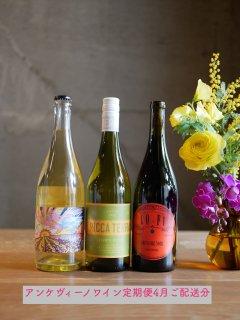 ワイン定期便・3ヶ月コース【総額¥21,000以上のワイン9本を3ヶ月間に渡ってご自宅にご配送!】※5月分完売しました。これから申込の方は6月スタートとなります※