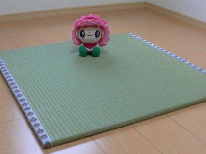 「おむらんちゃん畳」熊本い草 (85cm×85cm1枚) 半畳