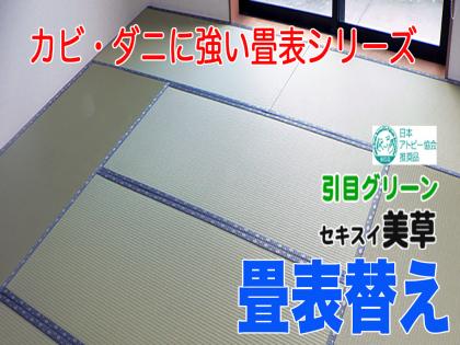 【畳表替え】 樹脂表