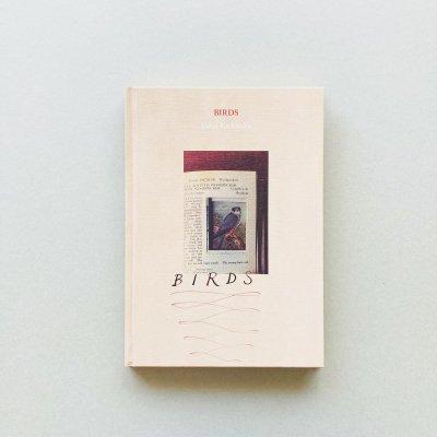 BIRDS / 吉楽洋平<br>Yohei Kichiraku