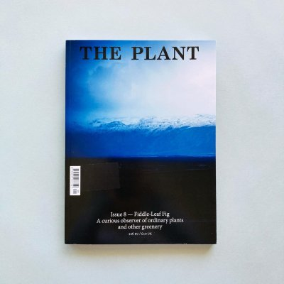 THE PLANT ISSUE 8<br>Fiddle - Leaf Fig