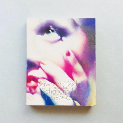合田佐和子 影像 1958-2003<br>絵画・オブジェ・写真<br>Sawako Goda Schattenbild