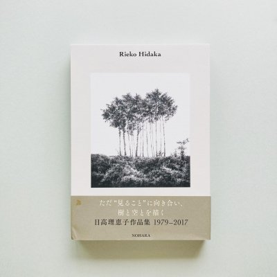 Reiko Hidaka 1979-2017<br>日高理恵子作品集