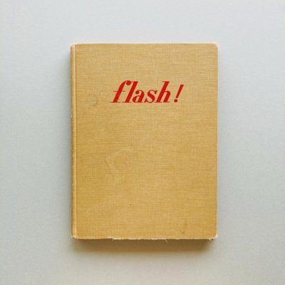 flash! seeing the unseen<br>by ultra high-speed photography
