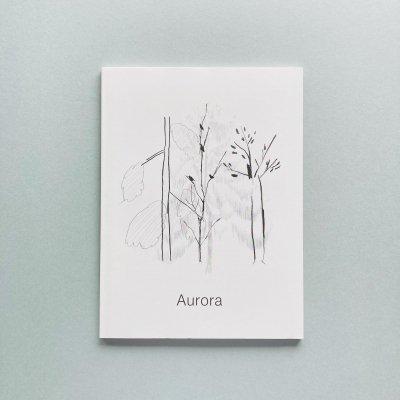 Aurora<br>平山昌尚(HIMAA), Noritake,<br>服部あさ美, 塩川いづみ