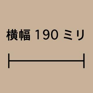 W190ミリ