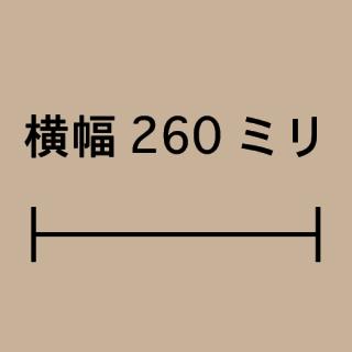 W260ミリ